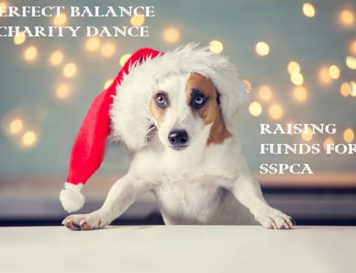 CHARITY CHRISTMAS DANCE 2018