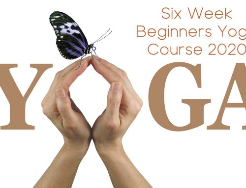 Beginners Yoga Course starts 17th February 2020